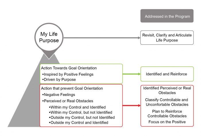 Apex diagram